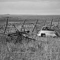 Isetta And Hay Rake by Melany Sarafis