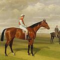 Isinglass Winner Of The 1893 Derby by Emil Adam