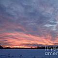 Island Barn Sunset by Robert Nickologianis