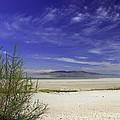 Island Beach by Gene Praag