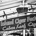 Island Cigar Factory Key West - Black And White by Ian Monk