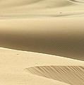 Island Desert Dunes by Brian Raggatt