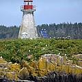 Island Lighthouse In Nova Scotia by Mary Christian Stewart