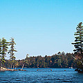 Island On The Fulton Chain Of Lakes by David Patterson