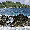 Island Paradise by Betty LaRue