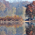Island Reflected In The Potomac River by Gregory Strong