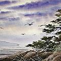 Island Sunset by James Williamson