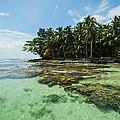 Island Time by Dennis Heald