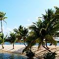 Isle @ Camana Bay by Amar Sheow