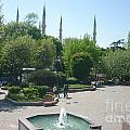 Istanbul Parki by Ted Pollard