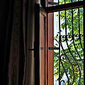 Istanbul Window by Ian  MacDonald