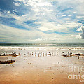 It Was A Sunny Day At The Beach From The Book My Ocean by Artist and Photographer Laura Wrede