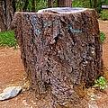 It Was A Tree by Bobbee Rickard
