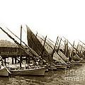 Italian Fishing Boats Fishermen's Wharf San Francisco Circa 1903 by California Views Archives Mr Pat Hathaway Archives