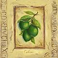 Italian Fruit Limes by Marilyn Dunlap