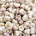 Italian Garlic Bulbs by Lee Serenethos