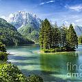 Italian Island by Timothy Hacker