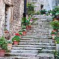 Italian Stairway by Georgette Grossman