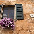 Italian Window by Brenda Kean