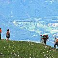 Italy Trekking by David Miller
