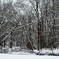 Its A Beautiful Winter by Kay Novy