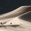 It's All Uphill by Sandra Bronstein