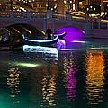 It's Not Venice - Brilliant Lights Glamorous Gondolas And The Magic Of Las Vegas At Night by Georgia Mizuleva