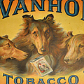 Ivanhoe Tobacco - The American Dream by Christine Till