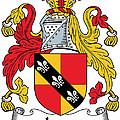 Ivers Coat Of Arms II Irish by Heraldry