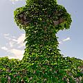 Ivy Covered Cross by Ed Weidman