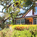 Jack London Countryside Cottage And Garden 5d24570 Long by Wingsdomain Art and Photography