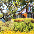 Jack London Countryside Cottage And Garden 5d24570 by Wingsdomain Art and Photography