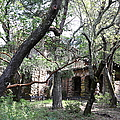 Jack London House Of Happy Walls 5d21961 by Wingsdomain Art and Photography