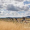 Jackleg Fence In The Desert by Cindy Singleton