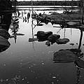 Jacks Lake 2  by Lyle Crump