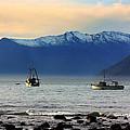 Jackson Bay South Westland New Zealand by Amanda Stadther