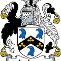Jackson Coat Of Arms Mayo Ireland by Heraldry