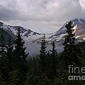 Jackson Glacier by Sharon Elliott