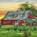 Jackson Orchard by Lori Deiter