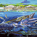 Jacksonville Kingfish Off0088 by Carey Chen