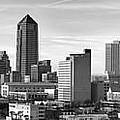 Jacksonville Skyline Morning Day Black And White Bw Panorama Florida by Jon Holiday