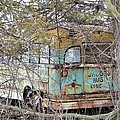 Jacob's Bus by Bonfire Photography