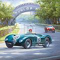 Jaguar D Type by Mike Jeffries
