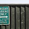 Jaguar Car Park by Joana Kruse