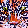 Jaguar Eyes-  by Ellen Levinson