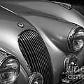 Jaguar Xk 120 by Dennis Hedberg