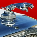 Jaguar Hood Ornament 2 by Jill Reger