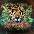 Jaguar by Mark Khan