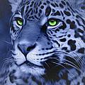 Jaguar by Melissa King