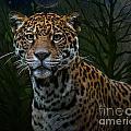 Jaguar Two by Ken Frischkorn